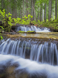 Washington State  Gifford Pinchot NF Waterfall and Forest Scenic