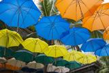 Mauritius  Port Louis  Caudan Waterfront Area with Umbrella Covering