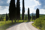 Winding Road  Near Pienza  Tuscany  Italy