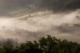Morning Mist  Coombes Valley  Gloucestershire  England  UK