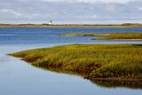 A Salt Marsh in Provincetown  Massachusetts