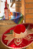 Canopy River  Tequila  Puerto Vallarta  Jalisco  Mexico
