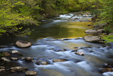Tennessee  Spring Reflections on Little River at Smoky Mountains NP