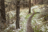 USA  Oregon  Smith Rock State Park Winter Trail