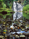 USA  Oregon  Young's River Falls Waterfall Landscape