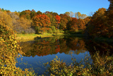 USA  Minnesota  Sunfish Lake  Fall Color Reflected in Pond