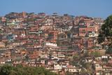Barrios  Slums of Caracas on the Hillside  Caracas  Venezuela