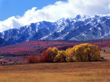 Utah Autumn Snow on Wellsville Mts Above Maple and Cottonwood Trees