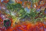 Agate in Colorful Design  Sammamish  WA