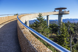 Tennessee  North Carolina  Great Smoky Mountains NP  Clingmans Dome