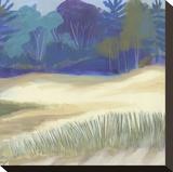 Coastal Dunes I