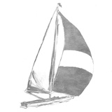 Full Sail Silver II (silver foil)