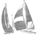 Full Sail Silver I (silver foil)