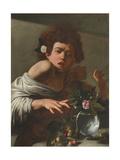 Boy Bitten by a Lizard  c1595-1600