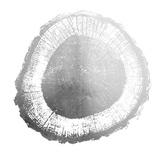 Silver Foil Tree Ring II