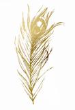 Gold Foil Feather I Reproduction d'art par Vision Studio