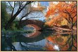Gapstow Bridge  Fall