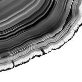 Grey Agate F