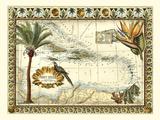Carte tropicale des Antilles Reproduction d'art par Vision Studio