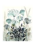 Allayed Floral II Reproduction d'art par Grace Popp