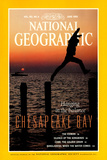 Cover of the June  1993 National Geographic Magazine