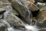 A Creek Cascading over Rocks