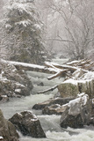 A Side Channel of the Potomac River Rushing Through a Snowy Landscape