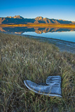 A Frosted  Abandoned Boot in Salt Grass by Big Alkali Lake