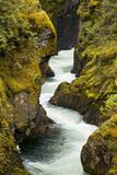 The Little Qualicum River Cuts a Gorge in Little Qualicum Falls Provincial Park