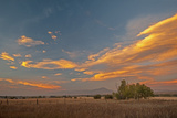 Lenticular Clouds Glow in a Sunset over Pastures in Montana's Gallatin Valley  Near Bozeman