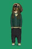 Reggae (Pets Rock)