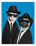 Brothers (Pets Rock) Reproduction d'art par Takkoda