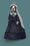 Queen Vic (Pets Rock)