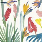 Tropical Exotics I
