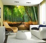 Bamboo Path Wall Mural