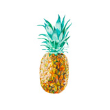 Low Poly Watercolor Pineapple