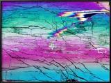 Disthene Mineral  Light Micrograph