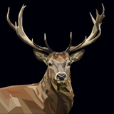 Majestic Deer with Mighty Antlers on Dark Background