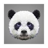 Panda Low Poly Portrait