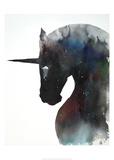 Dark Unicorn Full of Infinite Space