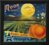 Moon Orange Label - Redlands  CA