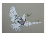 Dove Reproduction d'art par Banksy