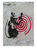 Rat radar