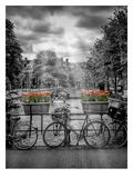 Typical Amsterdam II Reproduction d'art par Melanie Viola