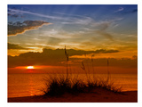 Gorgeous Sunset Reproduction d'art par Melanie Viola
