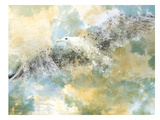 Digital Art Vanishing Seagull Reproduction d'art par Melanie Viola