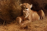 A Mother's Pride