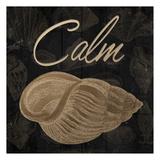 Calming Shell
