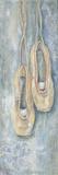 Hanging Ballerina Shoes