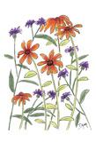 Orange Corn Flower